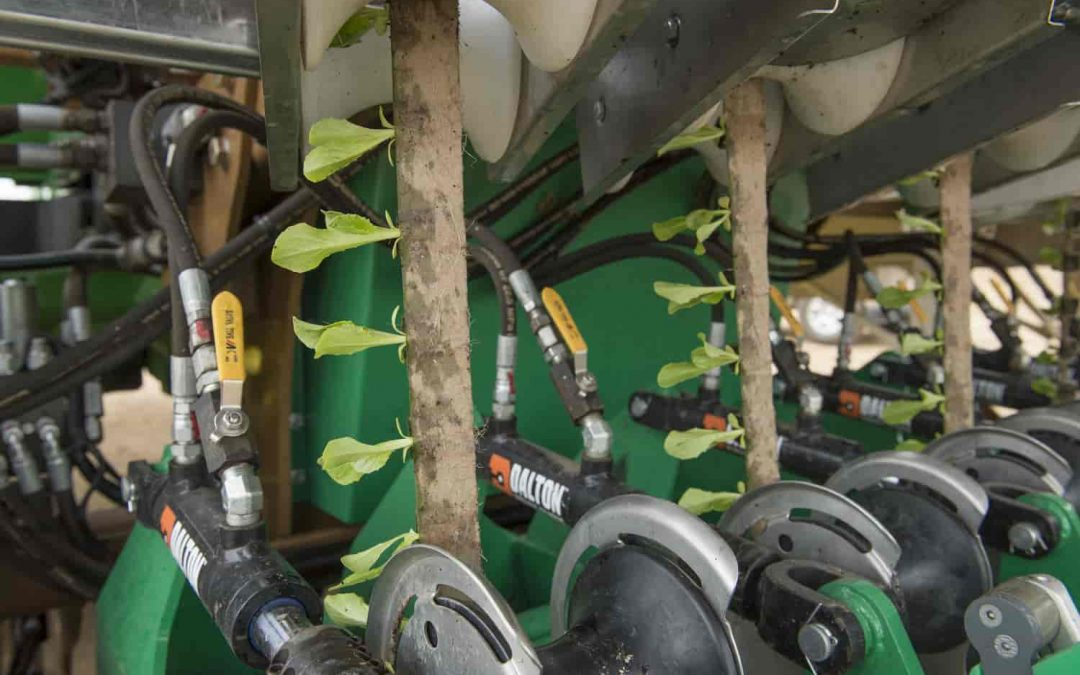 Producing more with less: PlantTape empowers precision agriculture